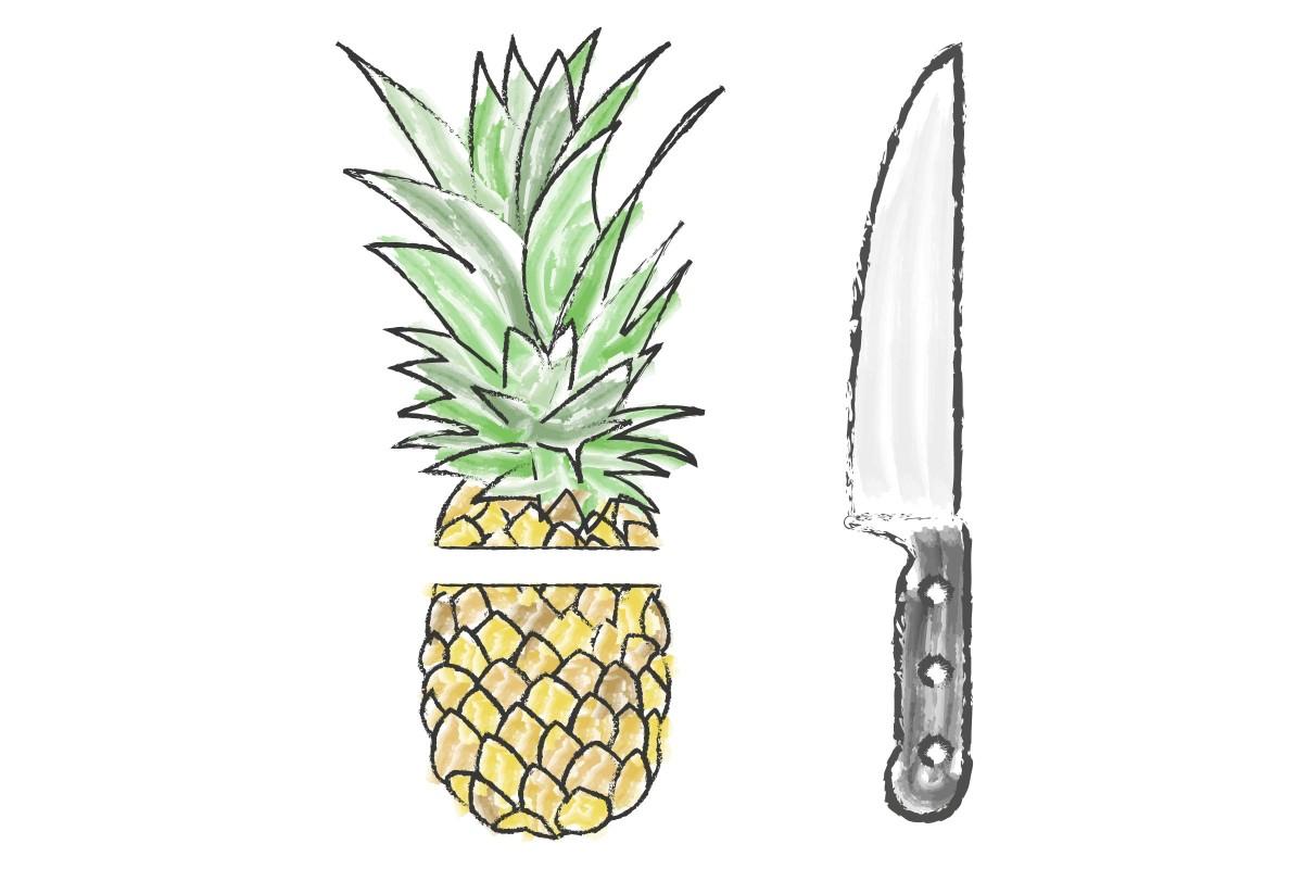 ananas wachsen lassen 01