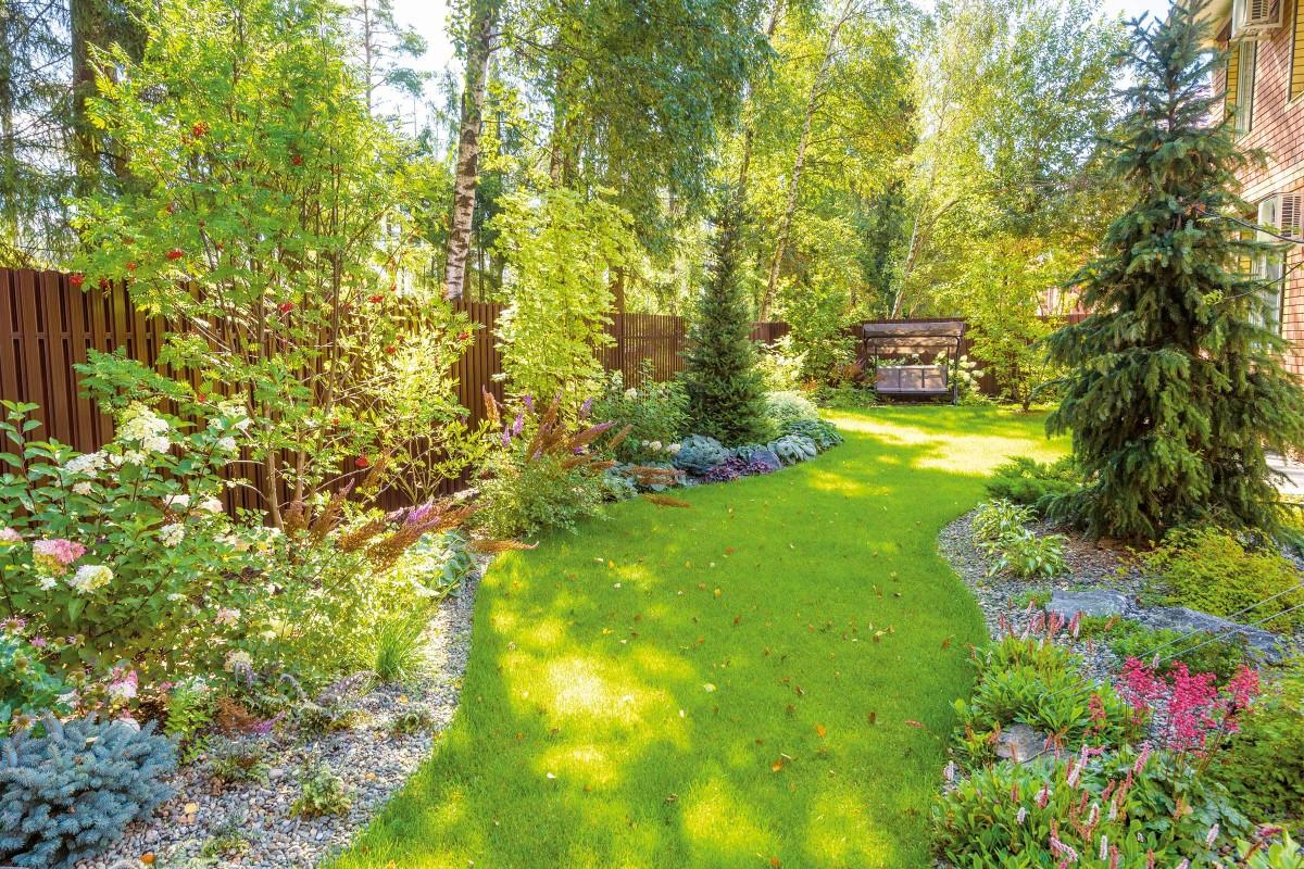 Naturliche Schattenspender Im Garten Hornbach