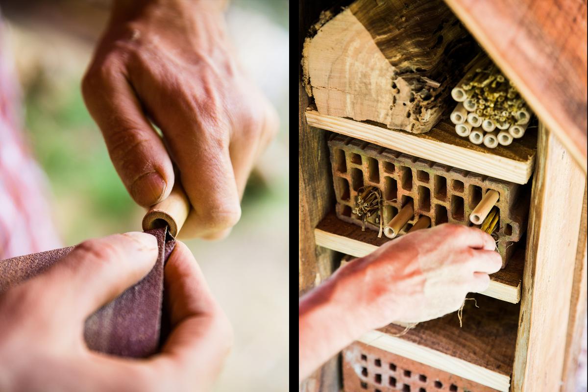 Autor Sascha Borrée stumpft scharfe Sägekanten eines Bambusrohres ab, damit die zarten Bienenflügel der Insekten nicht daran verletzt werden. Danach bringt er die unterschiedlichen Baustoffe seines Insektenhotels regengeschützt in Ziegelsteinen oder bodenlosen Blechdosen unter.