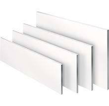 Regalboden weiß 19x200x1200 mm