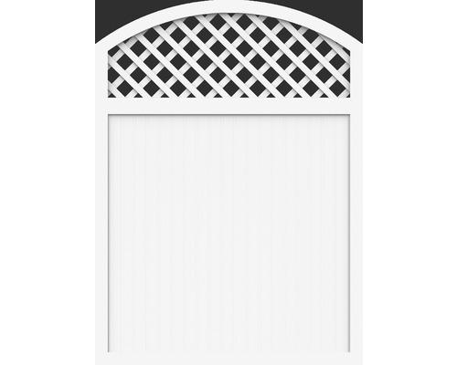 Sichtschutzelement Basic Line Typ X 150x205/180 cm