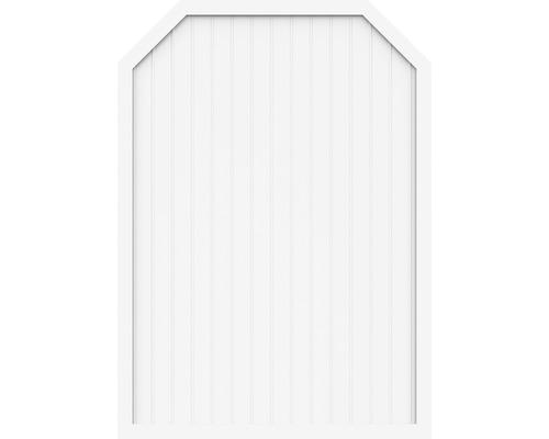 Sichtschutzelement Basic Line Typ J 70x210/180 cm