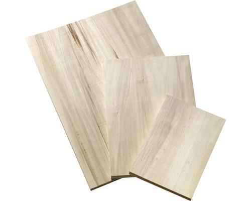 Bastelsperrholz Pappel 420x297x4 mm DIN A3 Pack=5Stück