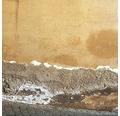 BAUMIT Sanierputz zur Sanierung von feuchten salzhaltigen Mauerwerk für innen und aussen 25 kg