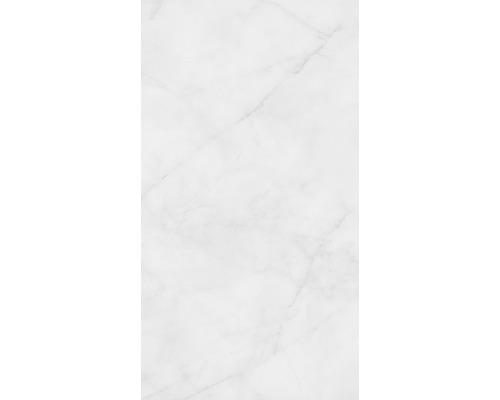 Steingut Wandfliese Pathos grau glänzend 25 x 45 cm