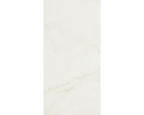 Steingut Wandfliese Carrara beige 30 x 60 cm glänzend