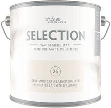 Premium Wandfarbe StyleColor SELECTION Farbton 25 Geheimnis der Alabasterfelsen 2,5 l