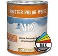Wandfarbe Meister Polarweiß im Wunschfarbton 1 l