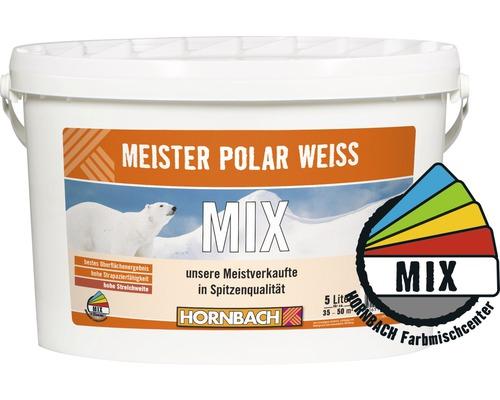 Wandfarbe Meister Polarweiß im Wunschfarbton 5 l