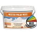 Wandfarbe Meister Polarweiß im Wunschfarbton 2,5 l