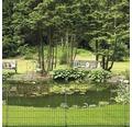 Teichzaun 116 x 80 cm, grün