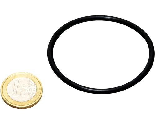 O-Ring JBL AQ Verschluss UV-C 5-36W