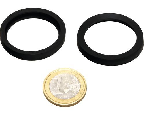 O-Ring JBL AQ für Schlauchanschluß UV-C 9-36 W 2 Stück