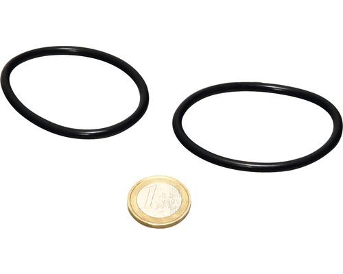O-Ring JBL AQ für Quarzglas UV-C 18/36 W 2 Stück