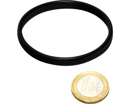 O-Ring JBL AQ für UV-C 18/36W