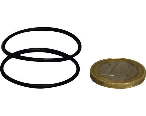 2x O-Ring Abdeckung + Schlauchanschluss JBL u800/1100