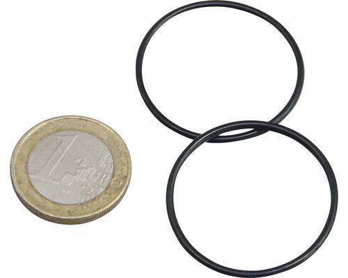 O-Ring JBL ProCristal i30 2 Stück