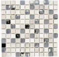 Glasmosaik XCM HQ20 mix hellgrau 30x30 cm