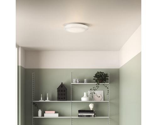 LED Deckenleuchte weiß 6W 600 lm warmweiß Ø 250 mm