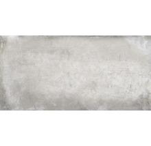 Feinsteinzeug Wand- und Bodenfliese Metropolitan grau 30 x 60 cm
