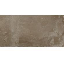 Feinsteinzeug Wand- und Bodenfliese Metropolitan braun 30 x 60 cm