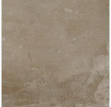 Feinsteinzeug Wand- und Bodenfliese Metropolitan braun 60 x 60 cm