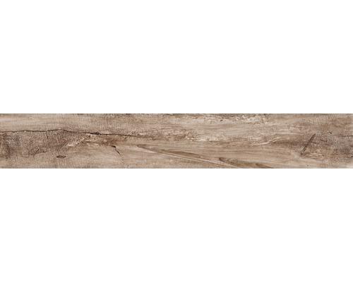 Feinsteinzeug Wand- und Bodenfliese Dakota glatt 15 x 100 cm marrone