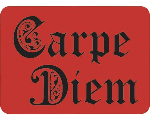 Dekorschablone Carpe Diem 56 x 43 cm