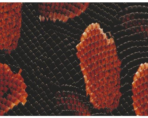 Wassertransferdruck Folie Schlange rot CD-90 100 x 50 cm
