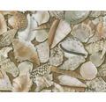Wassertransferdruck Folie Muscheln CD-185 100 x 50 cm