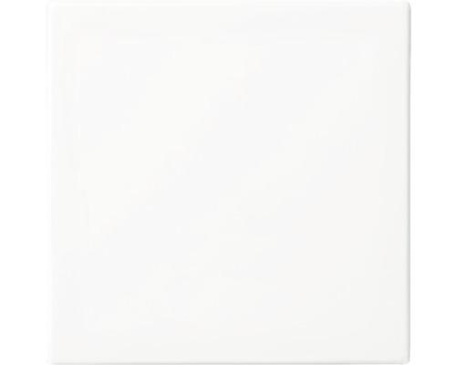 Wippe Universal Busch-Jaeger Balance SI alpinweiß 2506-914