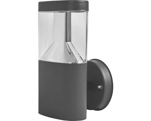 FLAIR LED Außenwandleuchte 7W 450 lm 3000 K warmweiß Muscida schwarz H 230 mm