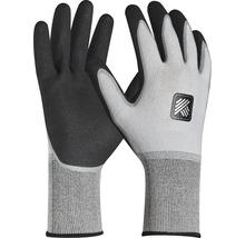 Arbeitshandschuhe Hammer Workwear Pro Tex Comfort grau/schwarz Gr. 8