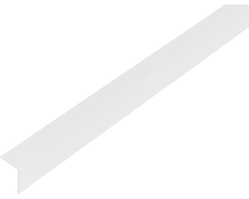 Winkelprofil Kunststoff transparent 20x20x1 mm, 2,6 m