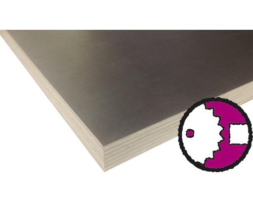 Siebdrucksperrholz Birke Sieb/Film 1250x2500x15 mm (Zuschnitt online reservierbar)