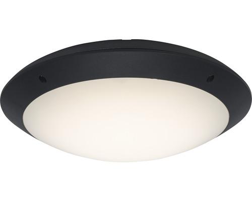 LED Außendeckenleuchte 1x12W 1000 lm 4000 K neutralweiß Ø 310 mm Medway anthrazit/weiß