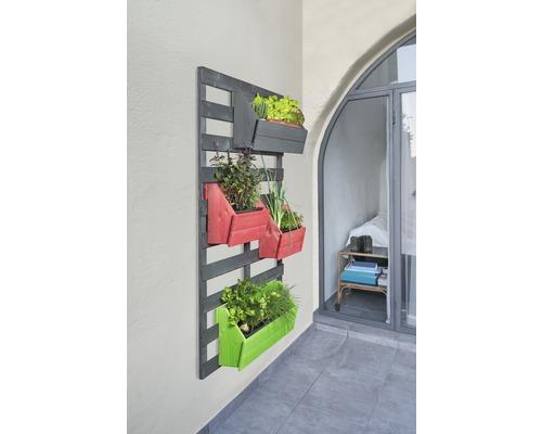 Rankgitter Konsta Joris ohne Blumenkästen 120 x 180 cm anthrazit