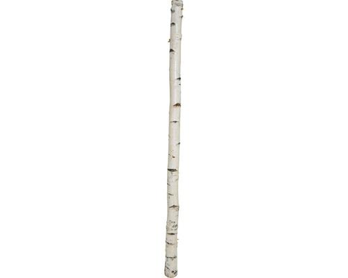 Birkenstamm Ø 8 cm 180cm