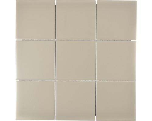 Keramikmosaik CQ 145 30x30 cm schlamm matt
