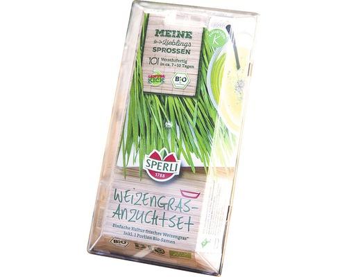 Grünsprossen-Anzuchtset Sperli Weizengras