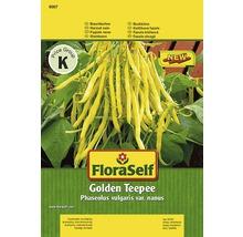 Buschbohne 'Golden Teepee' FloraSelf Gemüsesamen