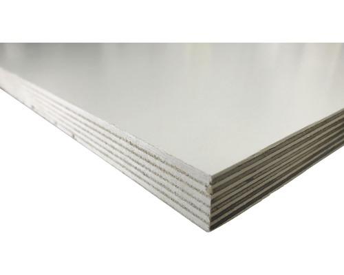 Multiplexplatte Birke weiß 1250x2500x21 mm