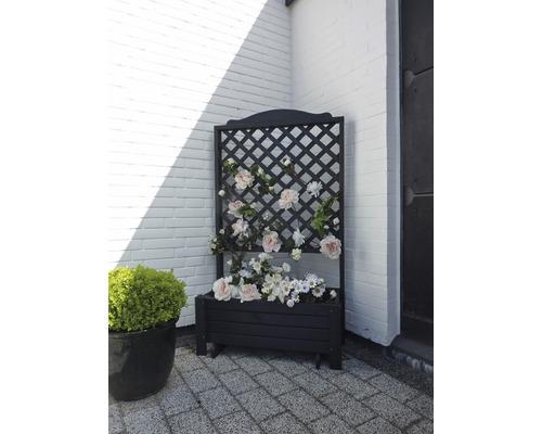 Pflanzkübel Romantica Kiefer 140x80x38 cm honigfarben