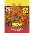 Tagetes 'Luna Orange' FloraSelf Blumensamen