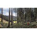 Forstschutzhose rot/gelb Gr. XXXL-78