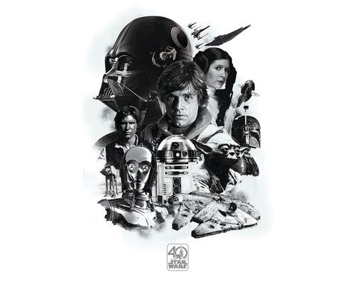 Poster Star Wars 40A 61x91,5 cm