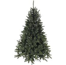 Weihnachtsbäume & Weihnachtsdeko