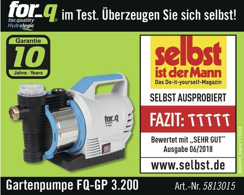 Gartenpumpe For Q Fq Gp 3 200 Mit Eco Motor Und Integriertes Ruckschlagventil Bei Hornbach Kaufen