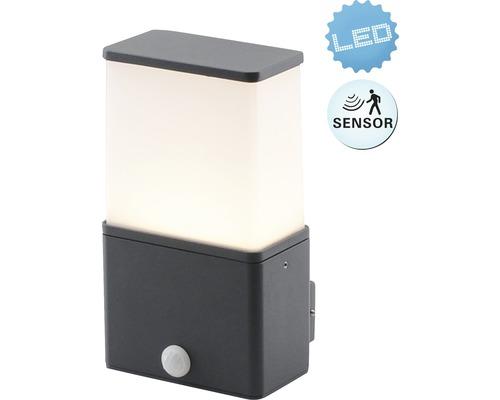 LED Sensor Außenwandleuchte IP54 9W 630 lm 3000 K warmweiß Vigo anthrazit H 220 mm