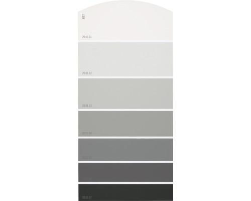 Farbmusterkarte Farbtonkarte H17 Farbwelt Grau 21x10 Cm Bei Hornbach Kaufen